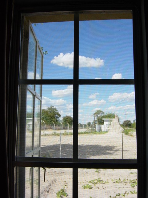 bedroomwindow this is the view out of our bedroom window facing